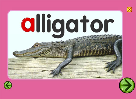 """Will it bite? """"A"""" is for alligator!"""