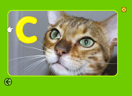 """C"" is for ""cat"" and ""cute""!"