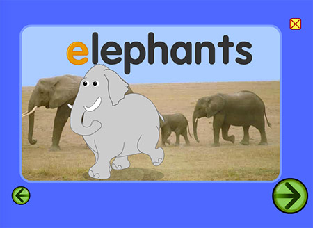 How did that extra elephant enter?