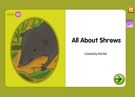 All About Shrews