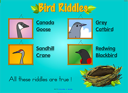 Learn about birds!