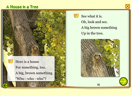 There's a perfect fit for these creatures who call a tree home.