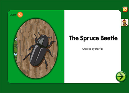 The Spruce Beetle